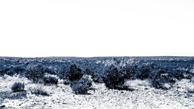 Komedal Road - Texas Road Trip 2014 - Marfa - DSC_0065