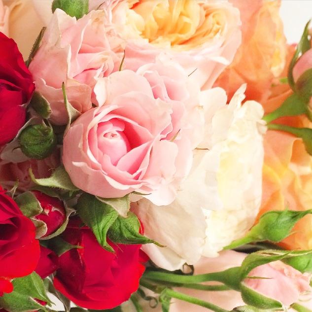 Komedal Road - Garden House Vintage - Roses
